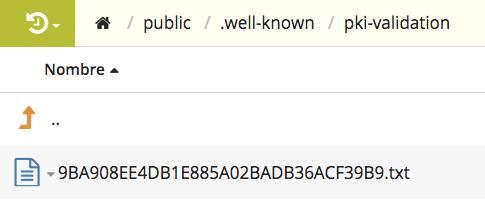 Configuración por TXT de  un SSL en DonDominio